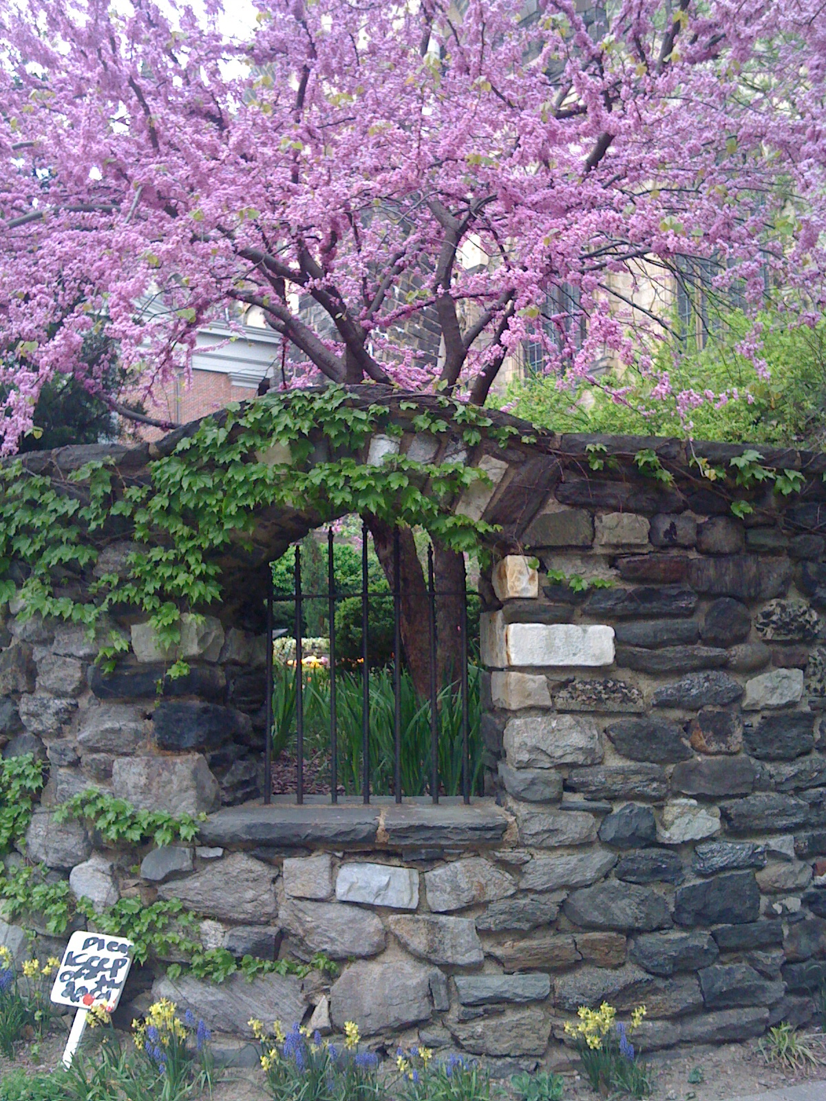 Secret Garden: Saint John The Divine: A Secret Garden In Morningside