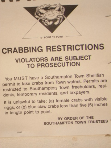 crabbing regulations, southampton long island