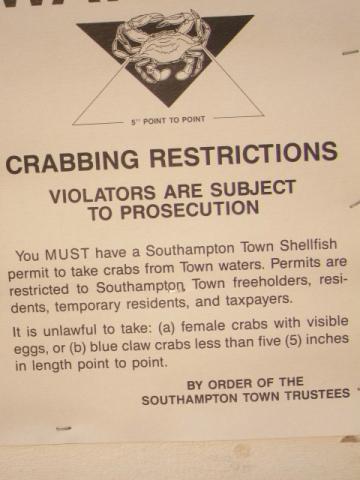 crabbing regulations, southampton long island