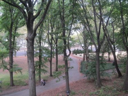 Riverside Park early fall