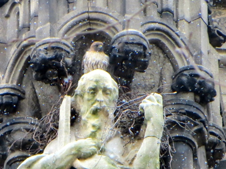 Atop the head of Saint Andrew high on the Cathedral of St John the Divine.