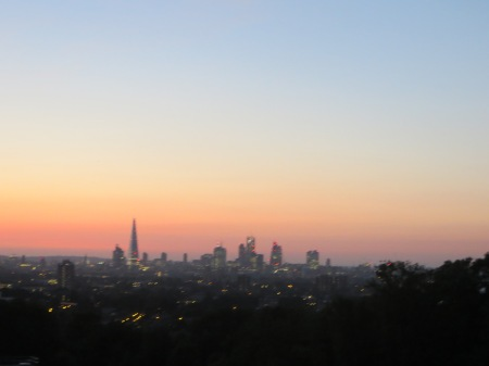 The view from Nunhead Reservoir.