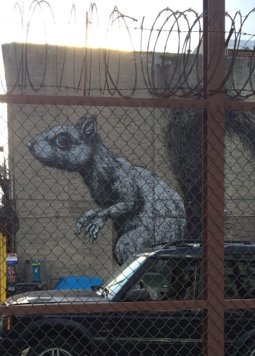 Squirrel eats Williamsburg.