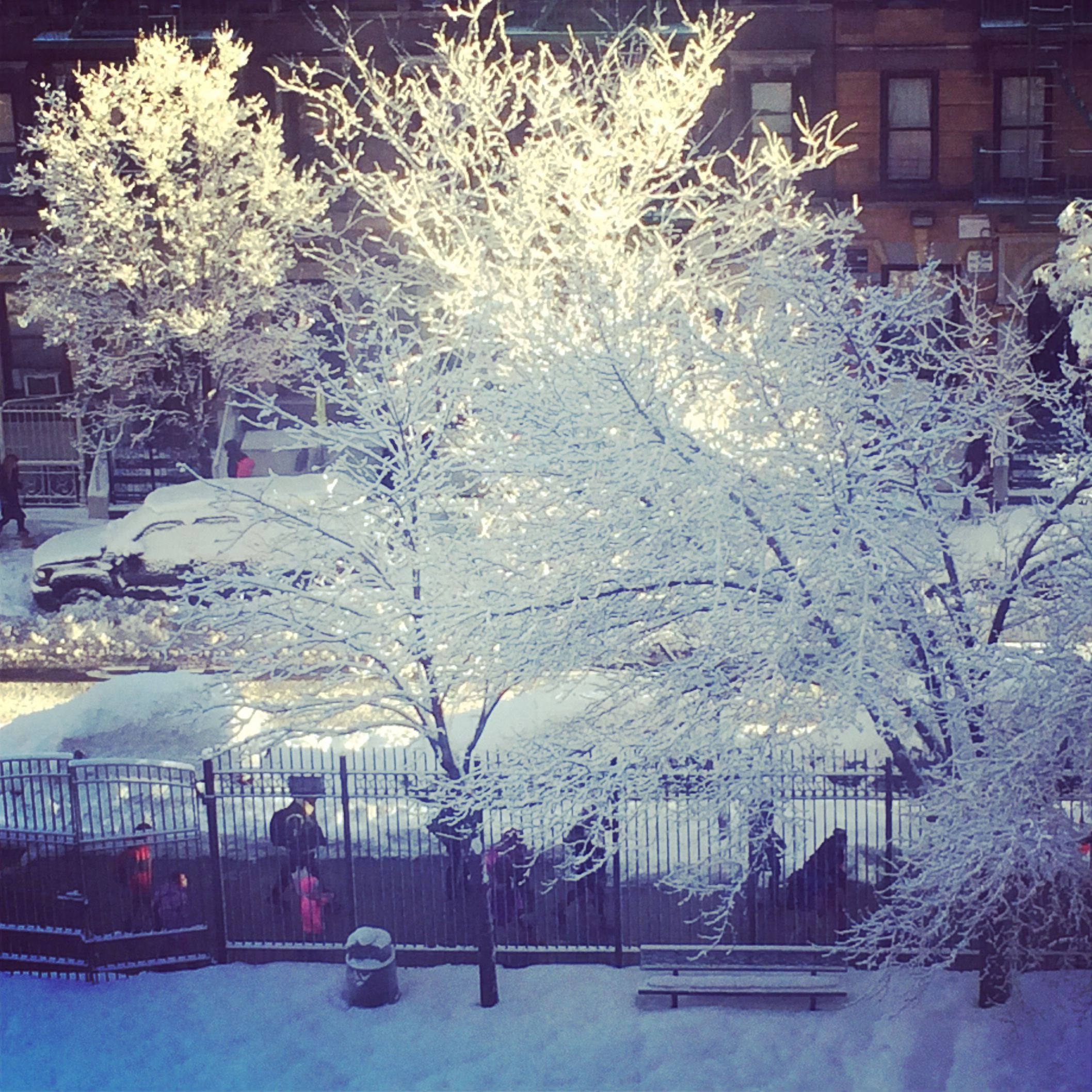 Winter world.