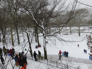 Sledding in Riverside Park.
