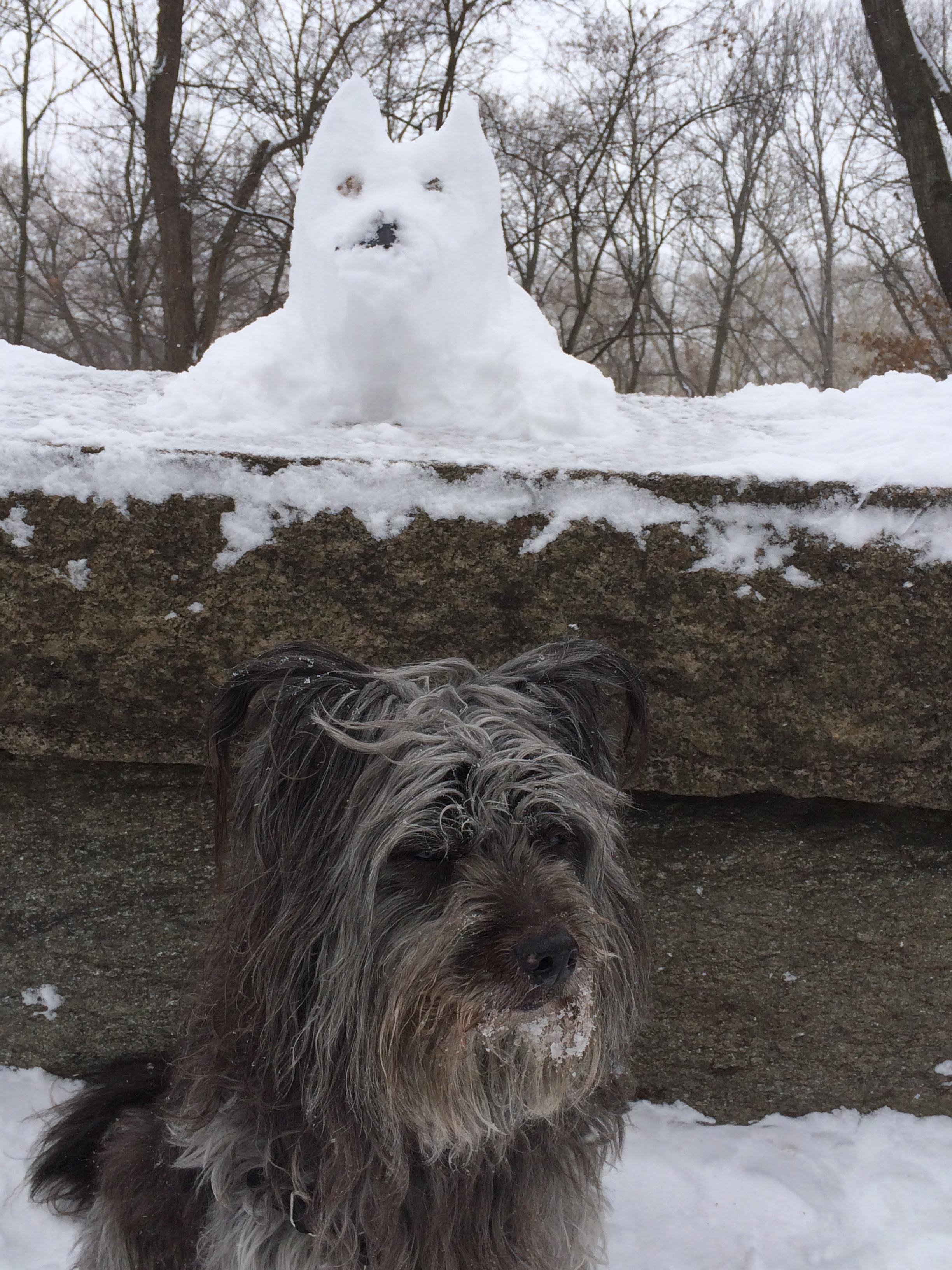 animals made of snow - photo #6